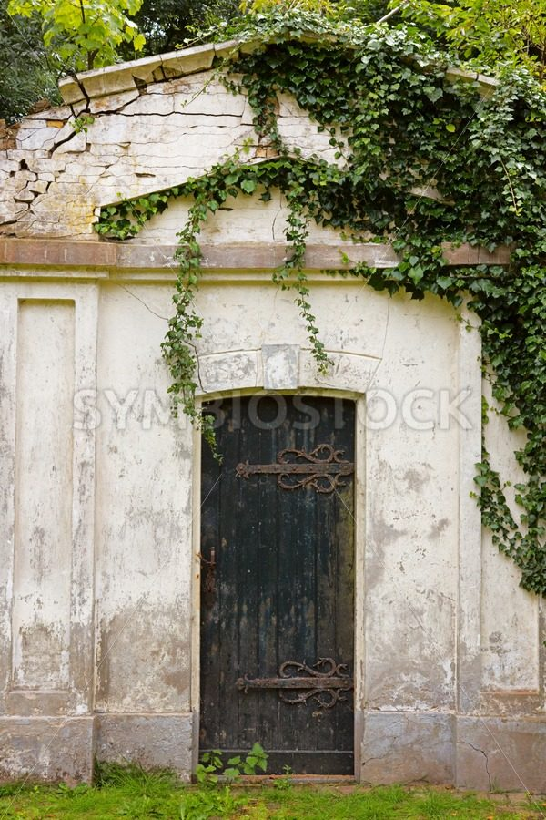 Old ruin covered by plants - Jan Brons Stock Images