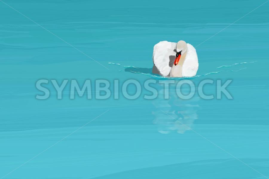 White swan blue lake - Jan Brons Stock Images